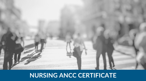 ANCC 20-Credit Certificate Course Bundle