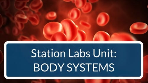 Body Systems Station Labs Bundle