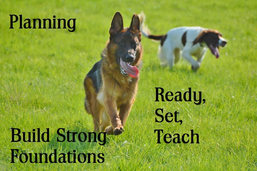 Lesson plans and Handouts for a 5 week Foundation/Puppy Dog Training Course