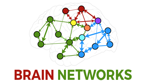 Brain Networks: practical applications and strategies to facilitate change