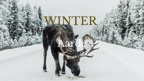 BONUS WORKSHOP: In ons Element - Winter - Aarde