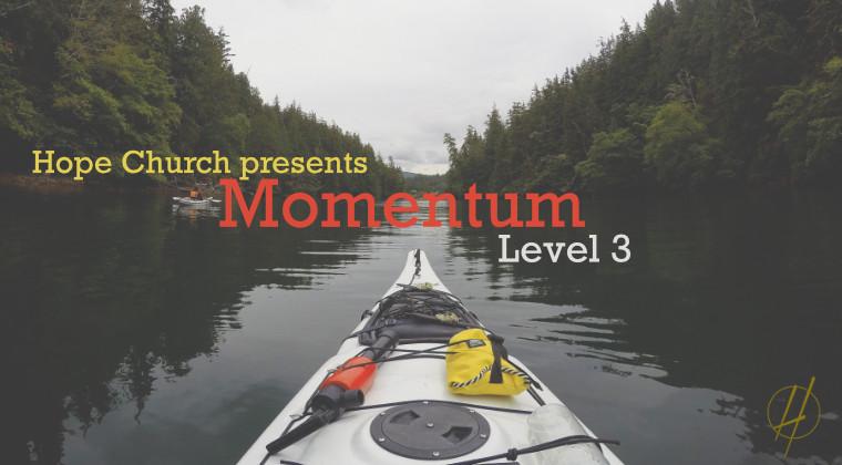 Momentum Level 3