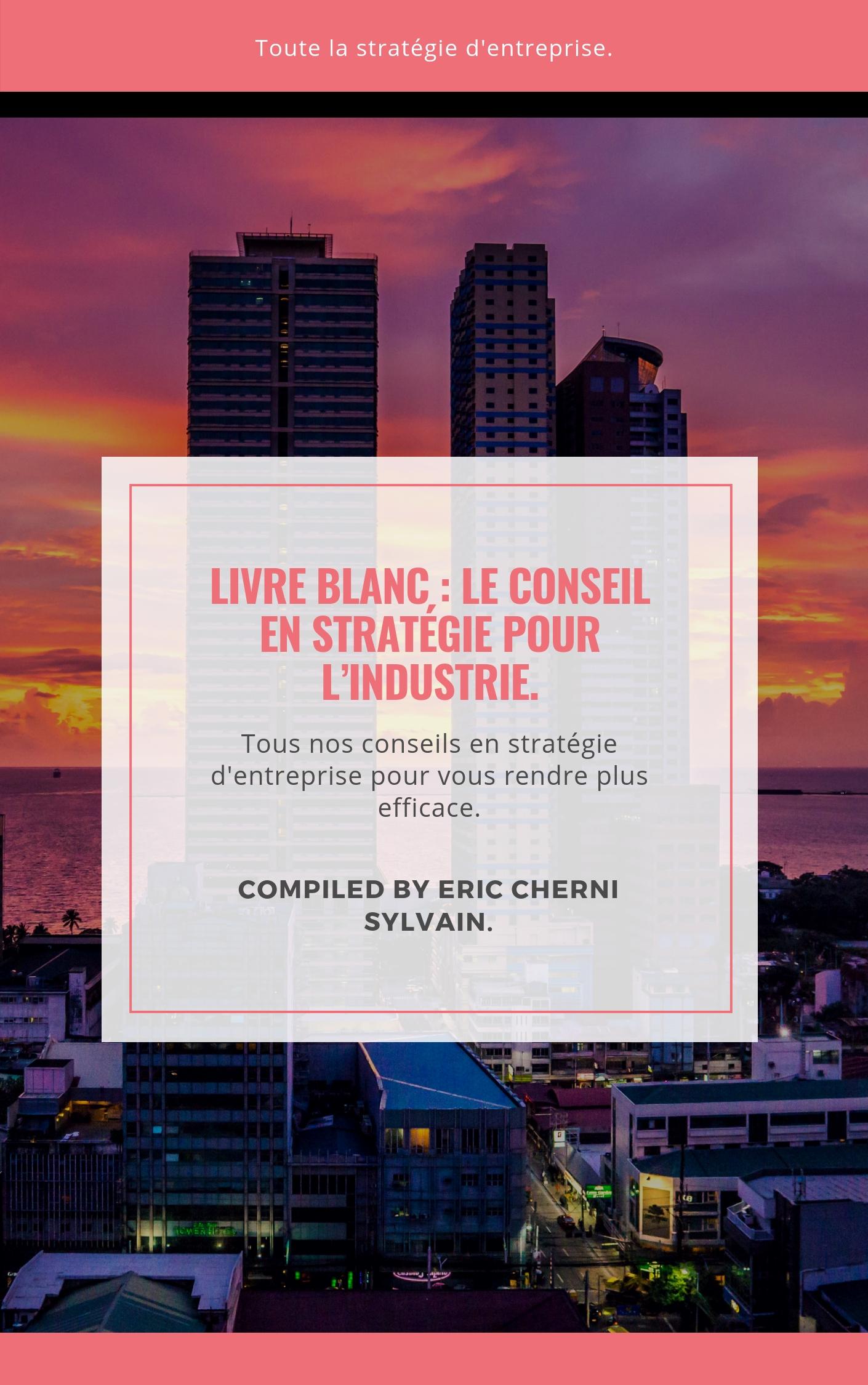 Livre Blanc, Conseil en stratégie pour l'industrie.
