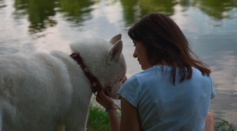 Yiredu: Communicating with Animals