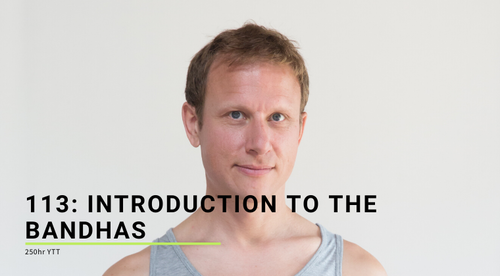 113: Introduction to the Bandhas