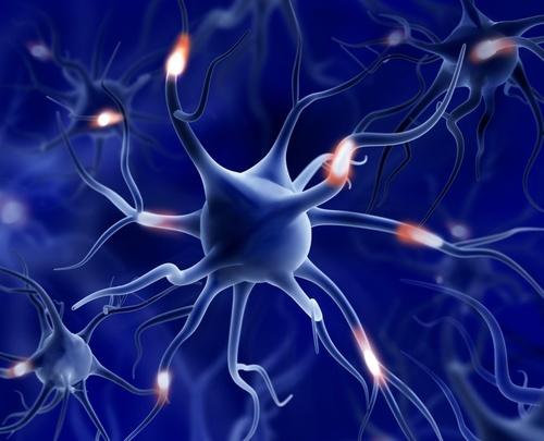 AI: neuronhálózati alapismeretek, egy zsiráf felismerése
