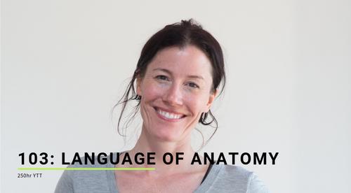 103: Language of Anatomy