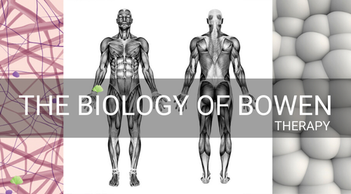 The Biology of Bowen