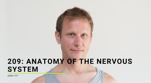 209: Anatomy of the Nervous System