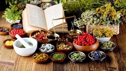Herbalism For Everyone - Accredited Herbalism Diploma