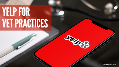 Yelp for Veterinary Practices