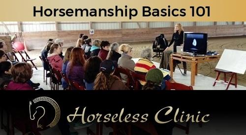 Horsemanship Basics 101