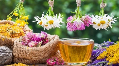 Certified Accredited Aromatherapy Diploma - Level 4 -  Essential Oils