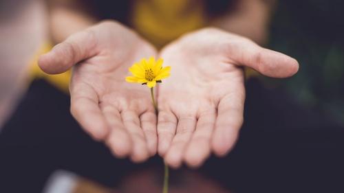 Forgiveness [Self-guided]