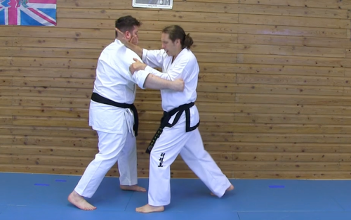 Mini Course: Knife Hand Block: Applications and Drills