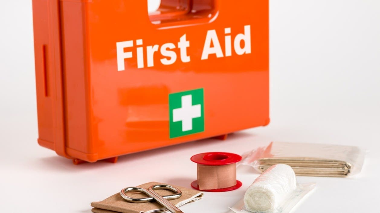 First Aid Review Course- 2.5 Hours