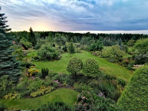 Webinar: kuidas kujundada kaunist aeda