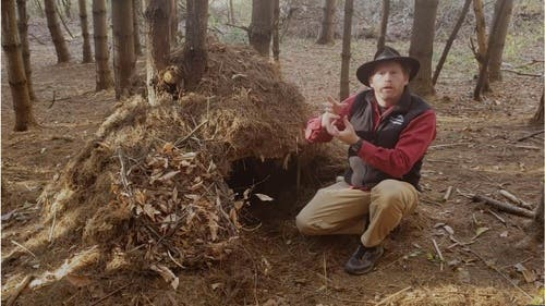 Learn how to build the Ultimate Survival Shelter!
