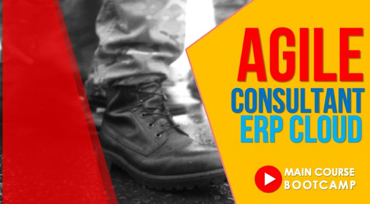 Agile Consultant : ERP Cloud Bootcamp - Main Course (OD)