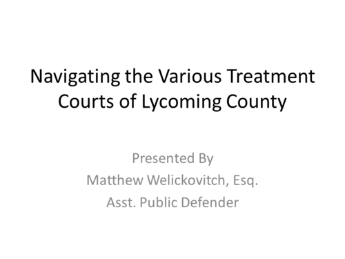 Navigating the Treatment Courts of Lycoming County (1 PA Substantive CLE)