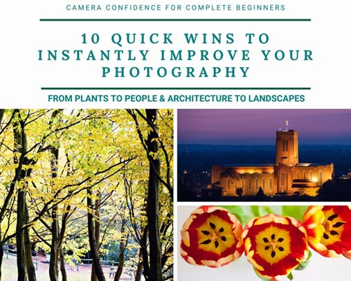 Photo of free guide - 10 Quick Wins to Instantly Improve Your Photography